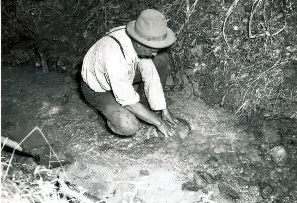 Panning For Gold In A Mountain Stream Photo Courtesy Of The Georgia Department Archives History
